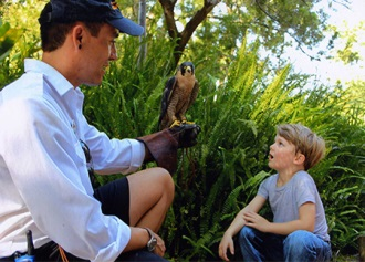 A kid looking at a bird being held by a man