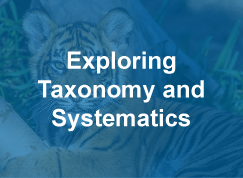 Thumbnail to a course sample titled Exploring Taxonomy and Systematics